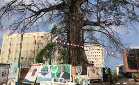 Cotton Tree, Freetown
